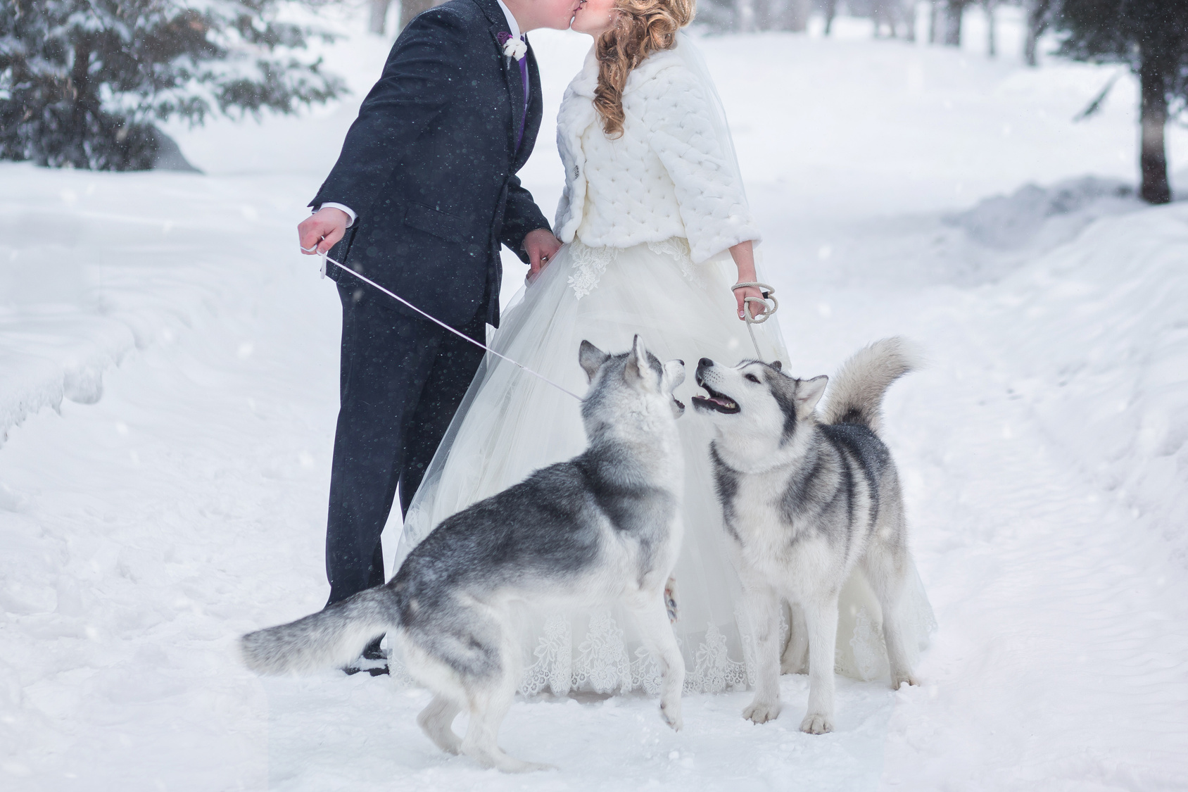 Winter Wedding4